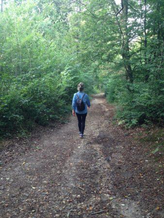 ruislip-forest-northwest-london