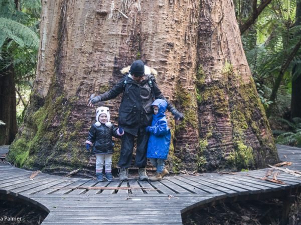 Hiking with young kids in Tasmania