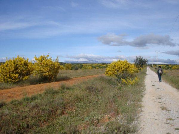 Mother & 9-year-old Daughter Walk 800km Camino Pilgrimage